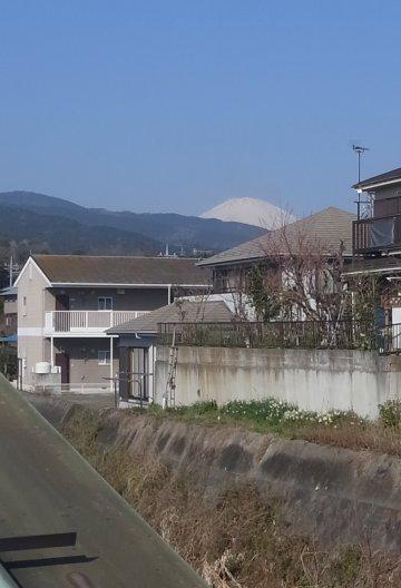Odawara14031611