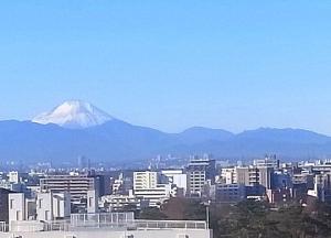 Fuji20210101